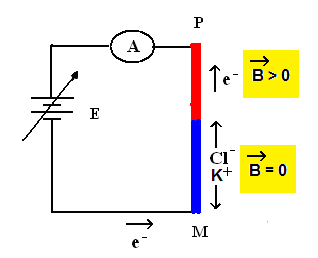 magnetic-current-arround-ionic-conductor01